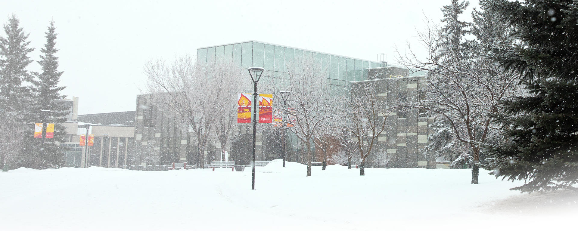 Taylor Institute building in the winter